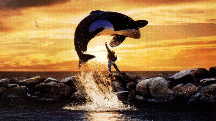 Minden idők 6 legjobb állatmentő filmje