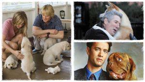 10 kutyás film, amit egyszer az életben látnod kell