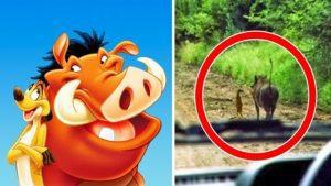 18 ismert Disney figura a XXI. században