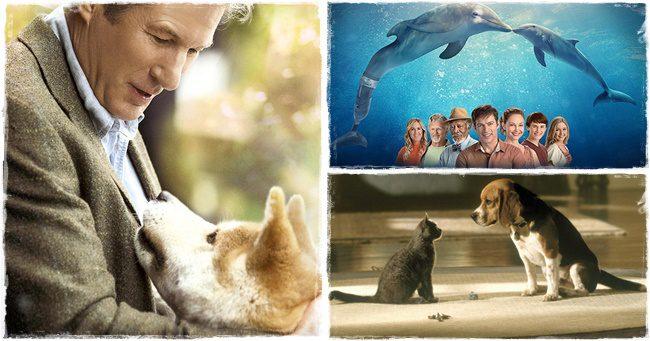 A 10 legjobb állatos film, amelyben tényleg az állatoké a főszerep