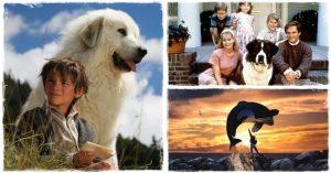 A legjobb állatos filmek