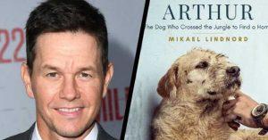 Mark Wahlberg kutyás filmben vállalt főszerepet!