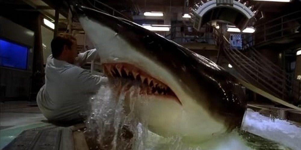 A legjobb cápás filmek