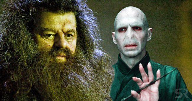 A Legendás állatok és megfigyelésük 3-ba visszatérhet Hagrid és Voldemort