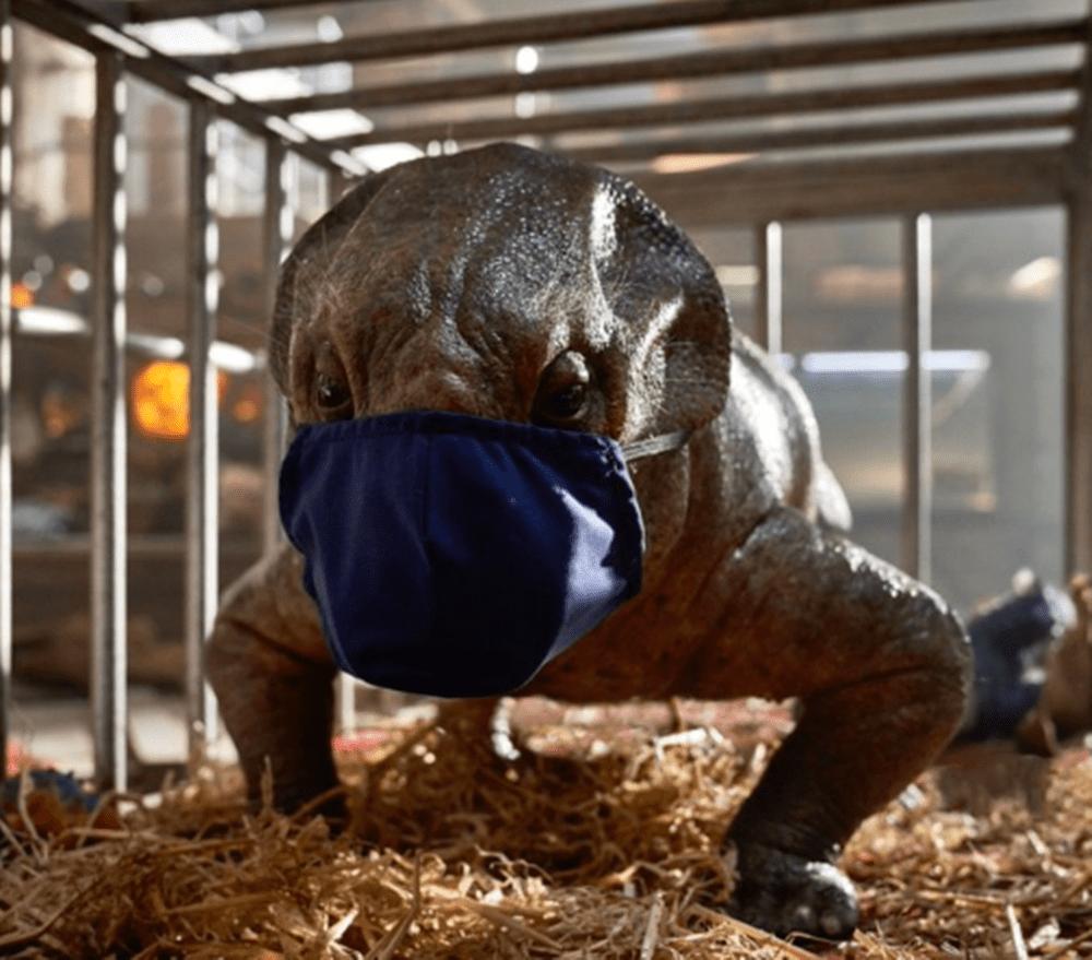 Koronavírus: csúszik a Jurassic Park: Világuralom és a Dűne premiere is