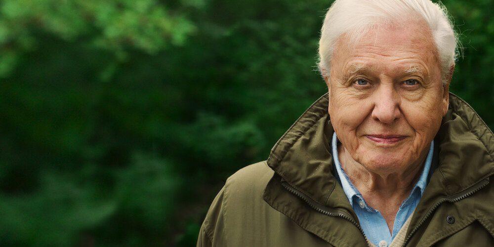 Klímaváltozásból klímakatasztrófa   David Attenborough: Egy élet a bolygónkon