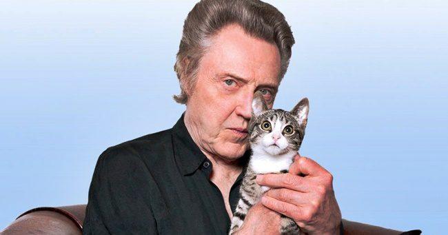 Christopher Walken, aki imádja a macskákat
